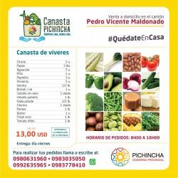 Canasta Pedro Vicente...