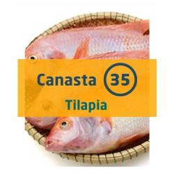 Canasta 35 - Tilapia